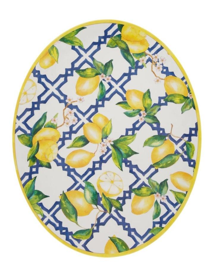 Limone Melamine Oval Platter image 1