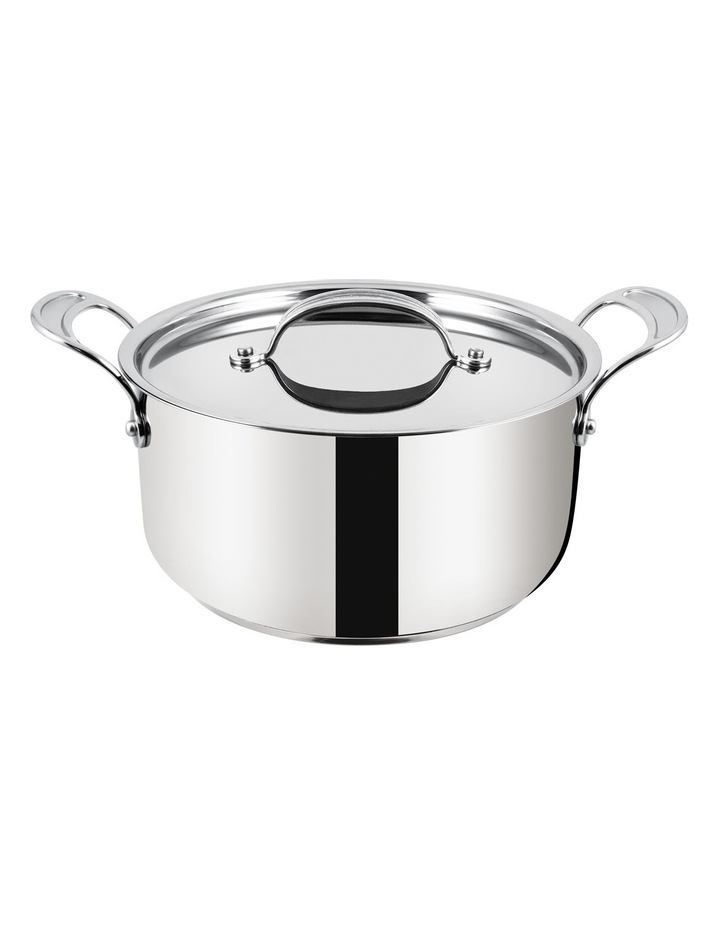Premium Stainless Steel Induction Stew Pot, 24cm image 1
