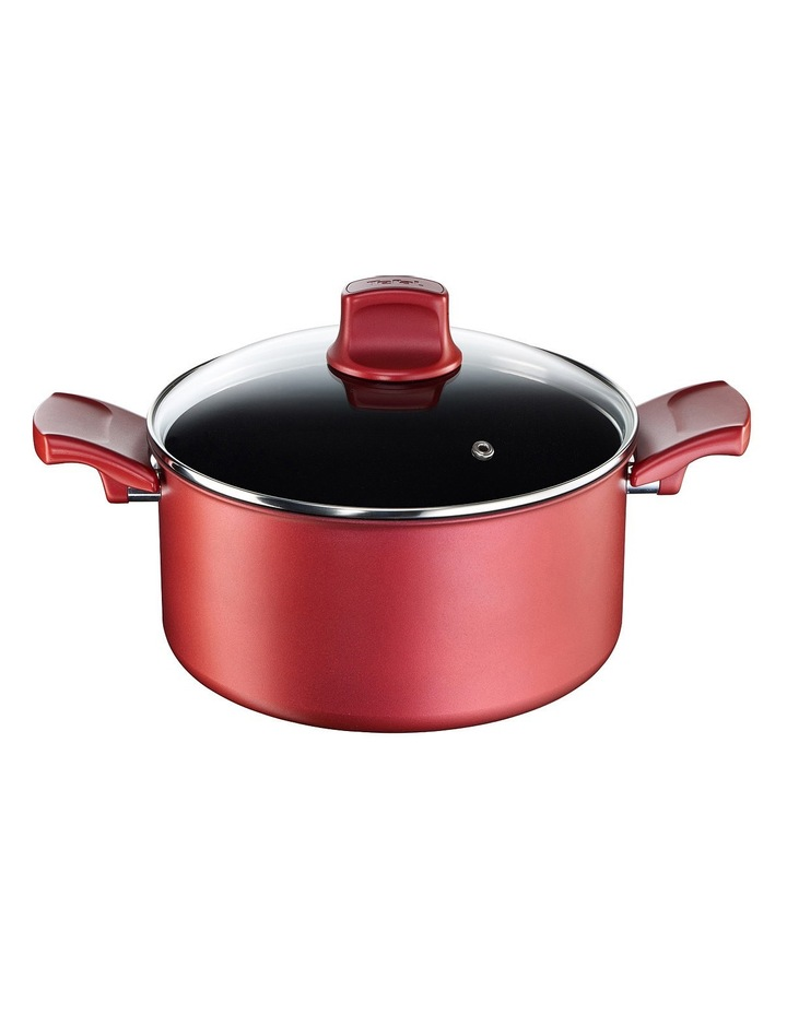Character Non-Stick Dutch Oven  24cm image 1