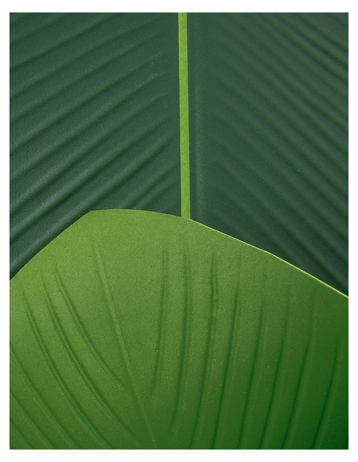 Palm Leaf Placemat image 3