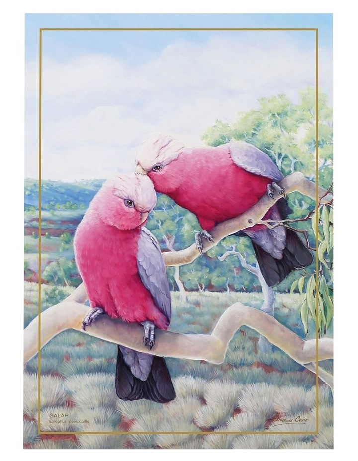 Birds of Australia KC 10yr Anniversary Tea Towel 50x70cm Galah image 1