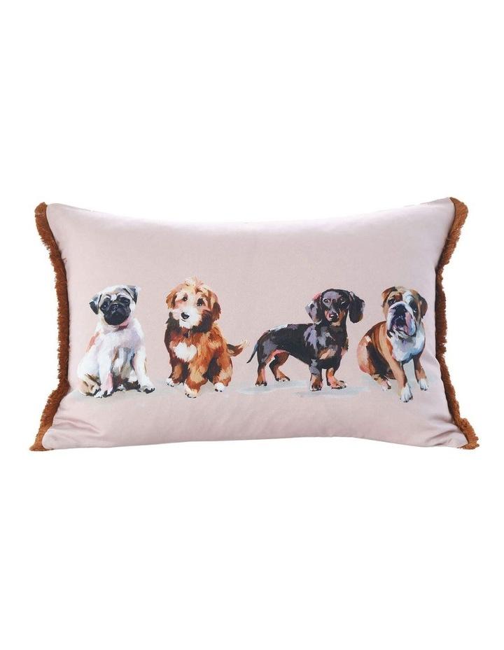 Otis Cushion In Multi image 1