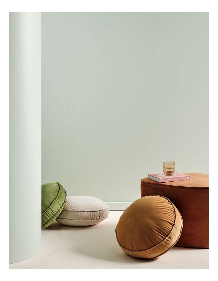 Toro Cushion image 2