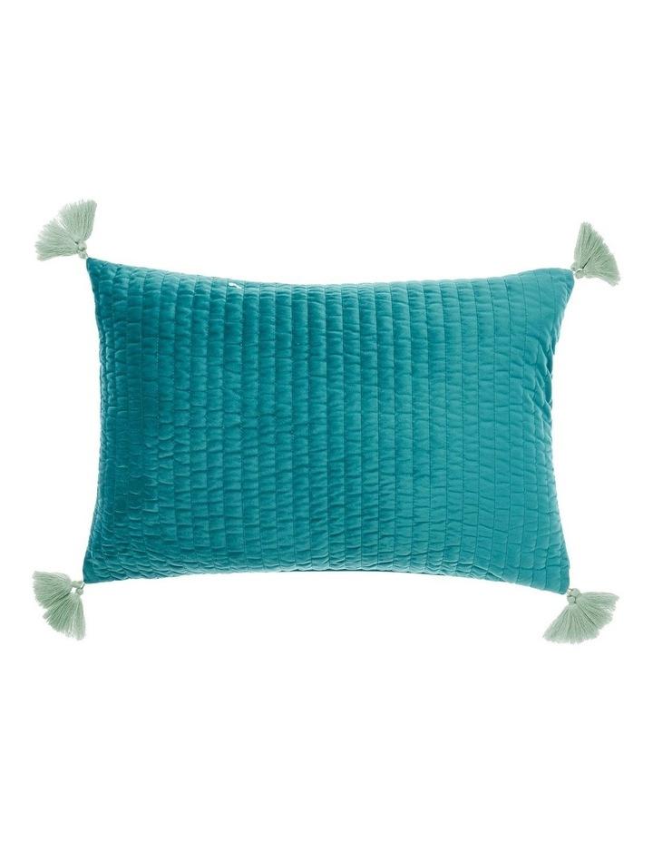 Drew Cushions image 1