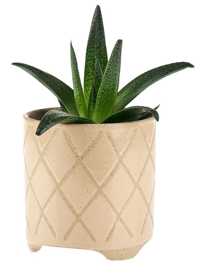 Estrada Planter Pot 16cm In Caramel image 2