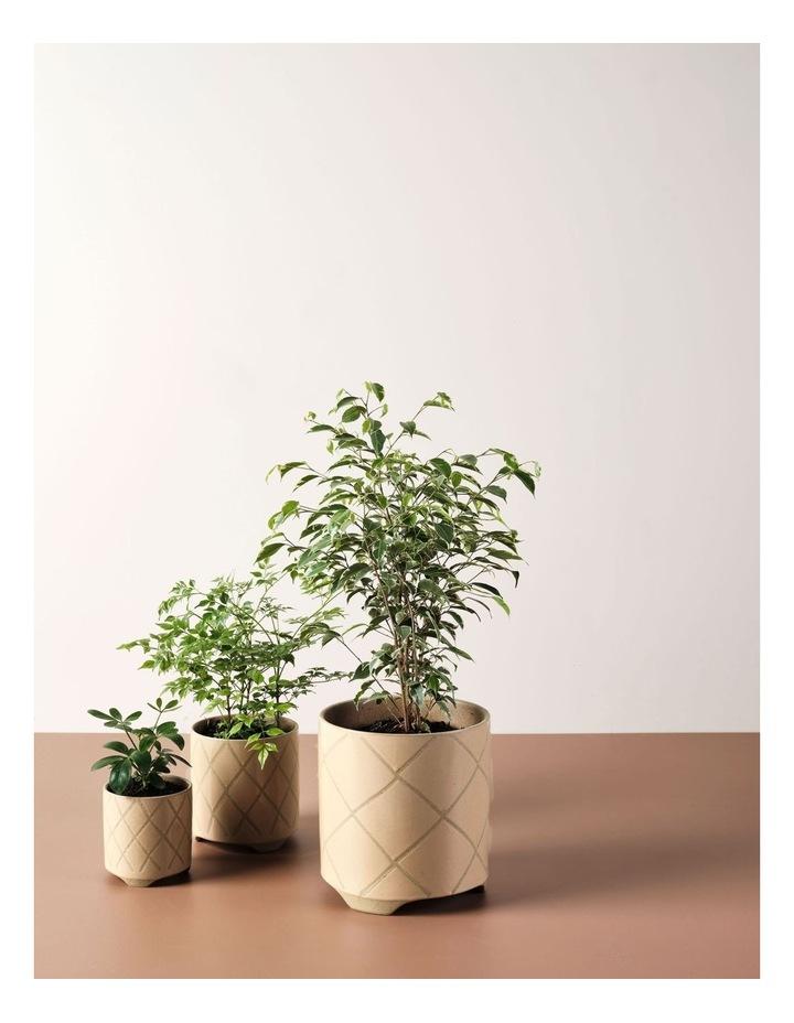 Estrada Planter Pot 16cm In Caramel image 3