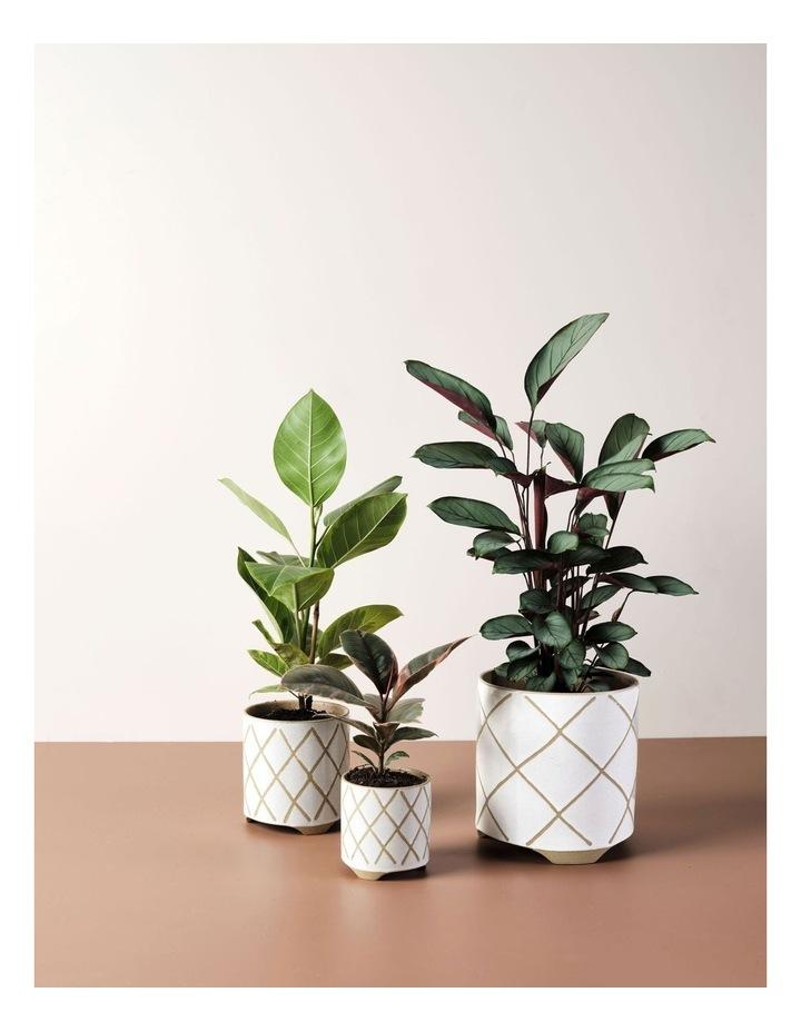 Estrada Planter Pot 12cm In White image 3