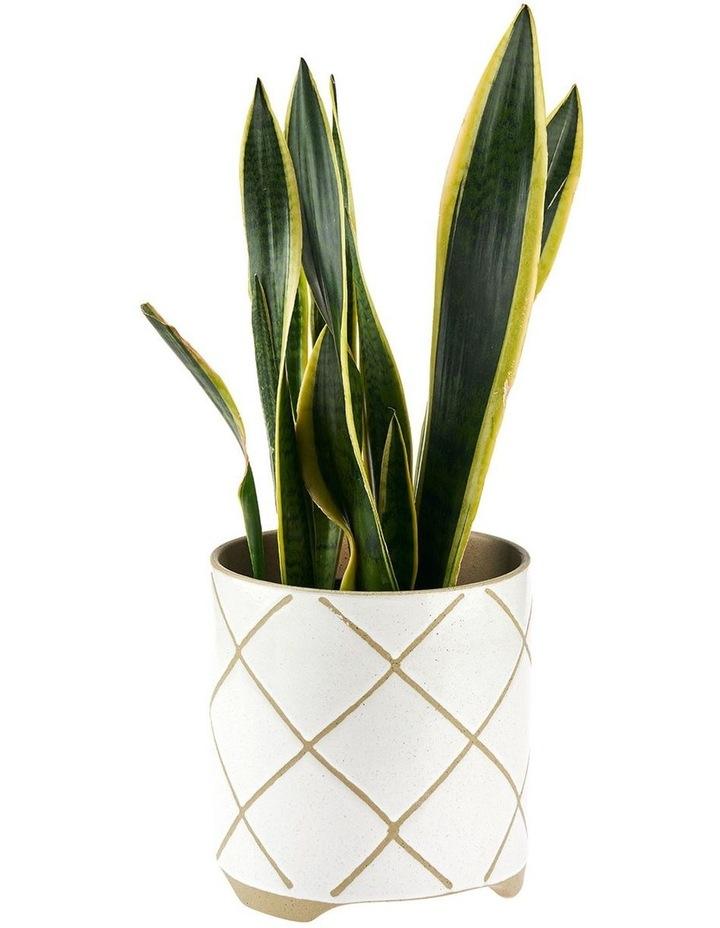 Estrada Planter Pot 24cm In White image 2