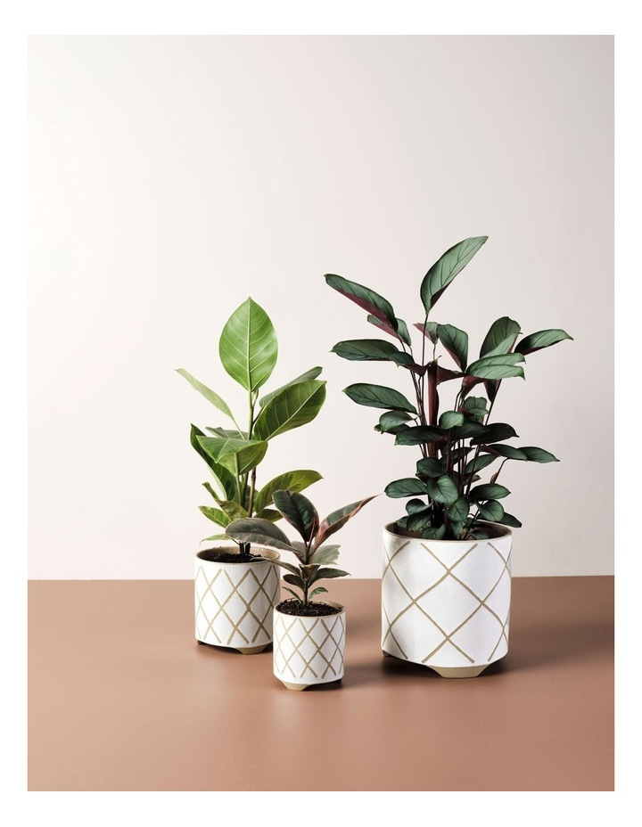 Estrada Planter Pot 24cm In White image 3