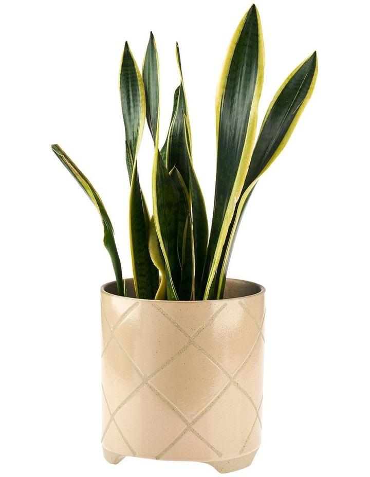 Estrada Planter Pot 24cm In Caramel image 2