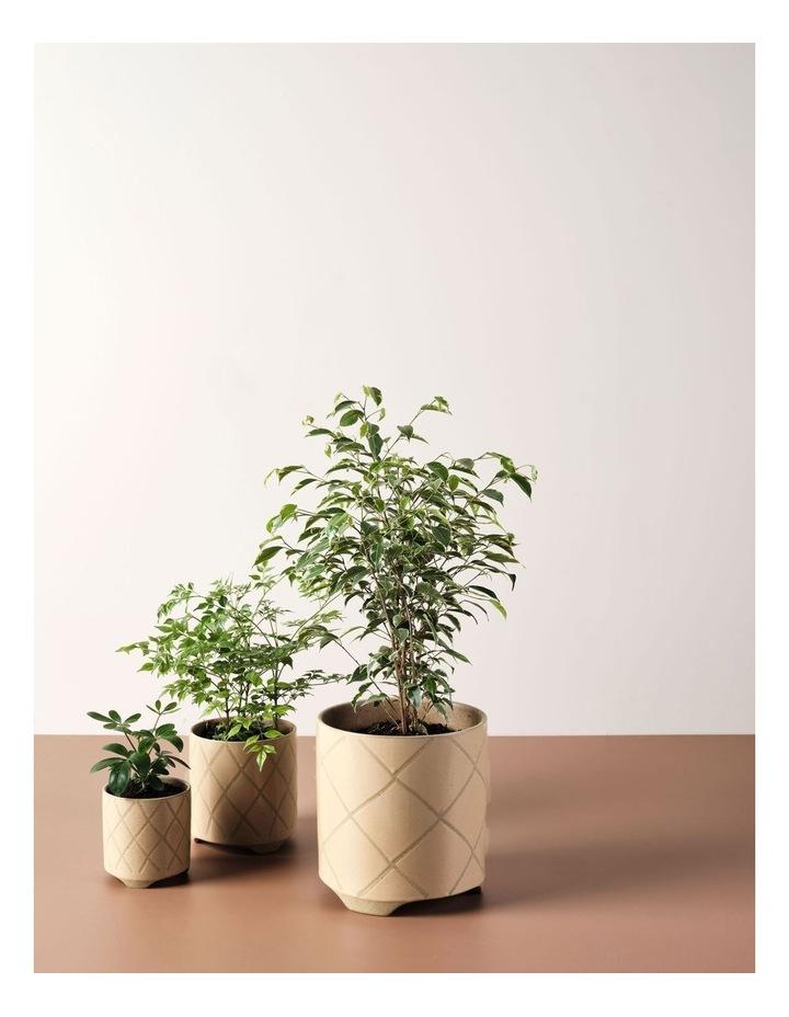 Estrada Planter Pot 24cm In Caramel image 3