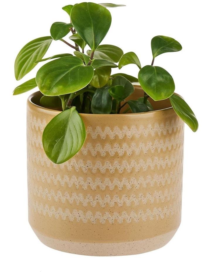 Dawn Planter Pot 20cm In Mustard image 2