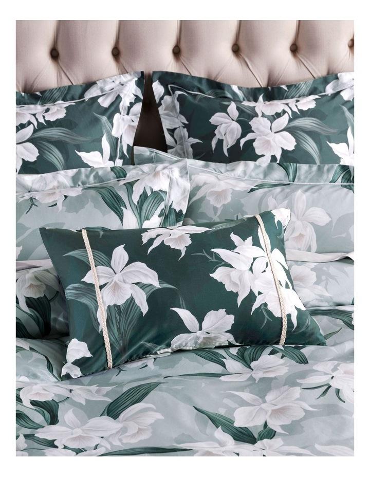 Cattleya Cushion image 2