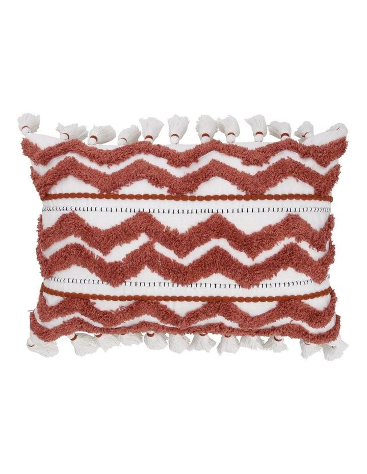 Kalna Embroidered Tassle Cushion image 1
