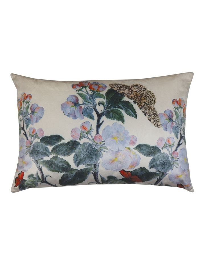 Tivoli Velvet Cushion- Multi 40x60cm image 1