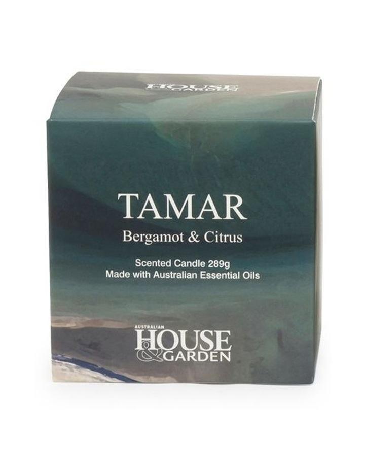 Tamar Bergamont & Citrus Candle 289g image 3