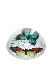 Glass Paperweight  Large