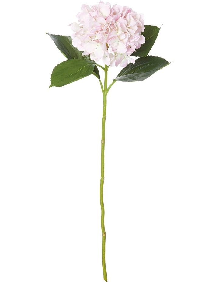 Hydrangea Stem 32x32x67cm - Pink image 1