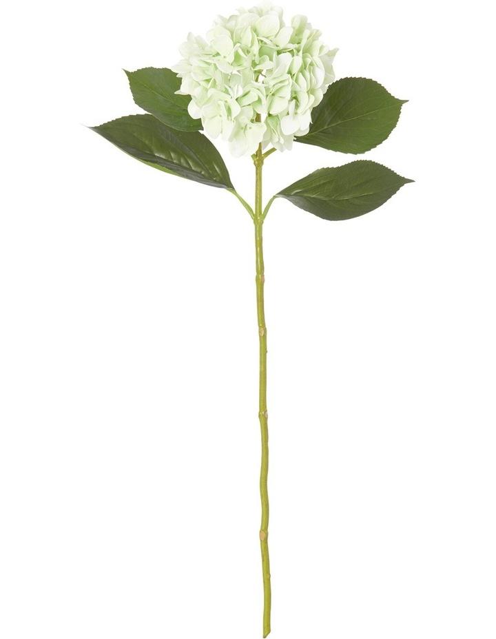 Hydrangea Stem Green 32 x 32 x 67cm image 1