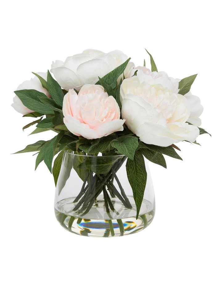 Peony in Classic Glass Bowl Pink image 1
