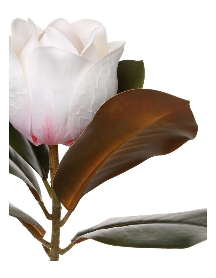 Pink Magnolia Stem 66cm image 2