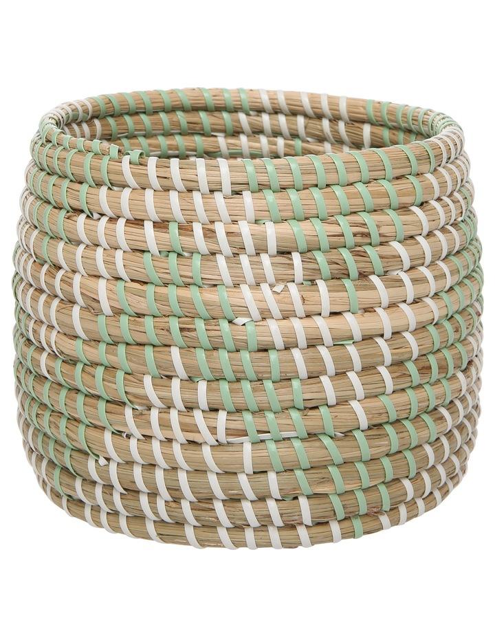 Seagrass Green Basket image 1