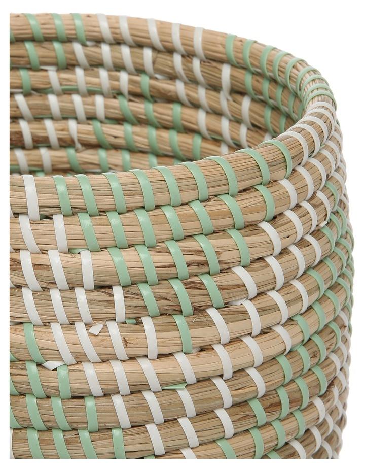 Seagrass Green Basket image 2