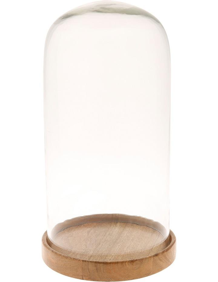 Mango Wood & Glass Cloche 35cm image 1