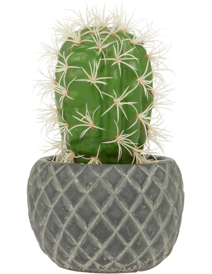 Artificial Cactus in Textured Cement Pot 20cm image 1