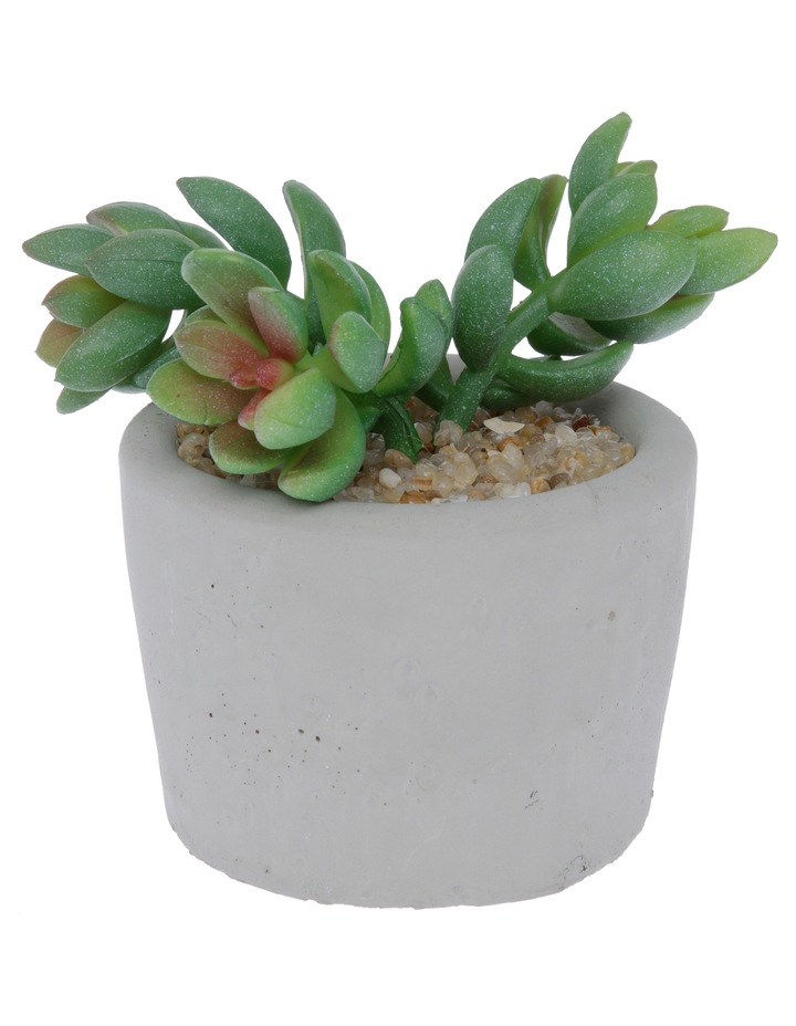 Artificial Jet Beads Succulent in Round Cement Pot image 1