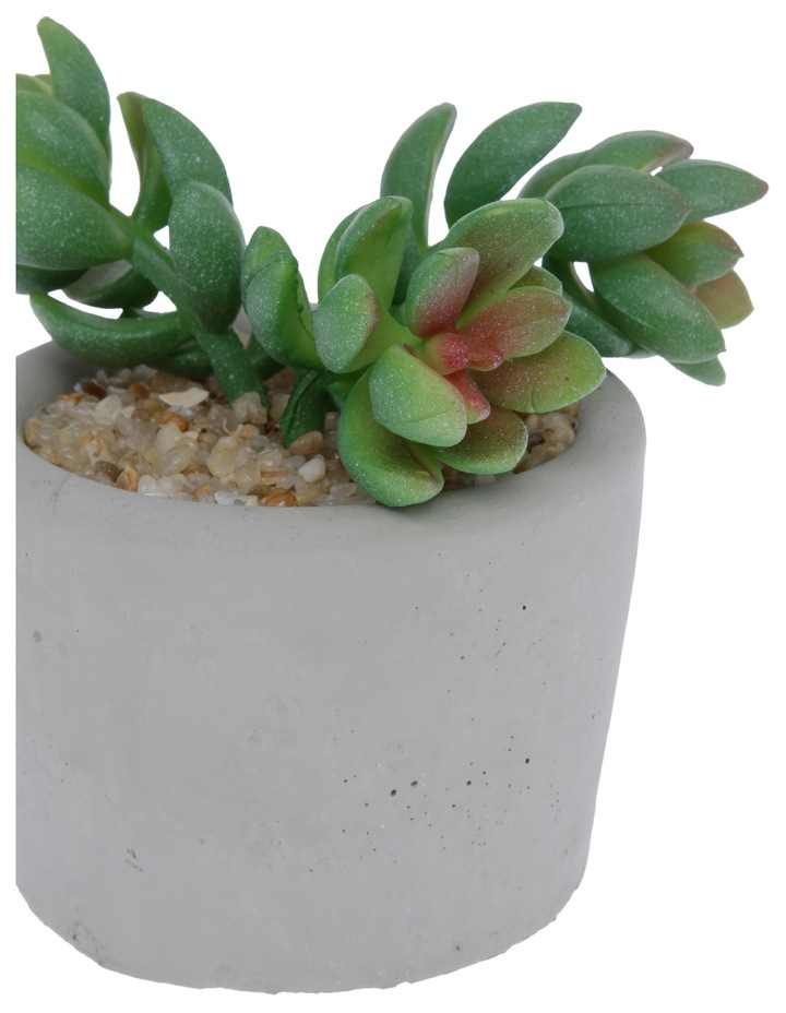 Artificial Jet Beads Succulent in Round Cement Pot image 2