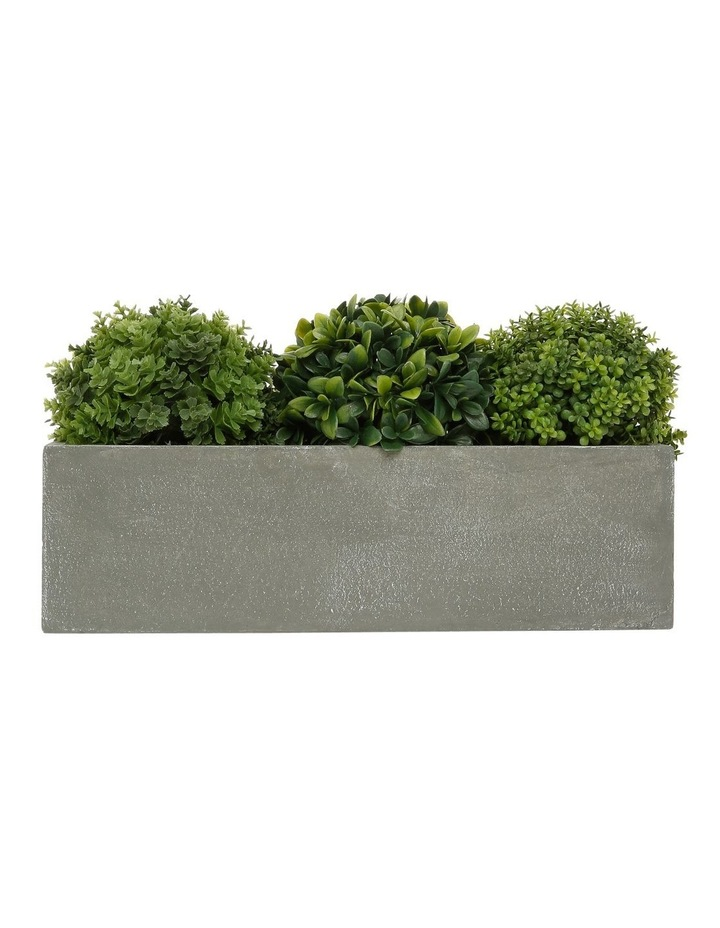 Triple Topiary Grey Planter Box image 1