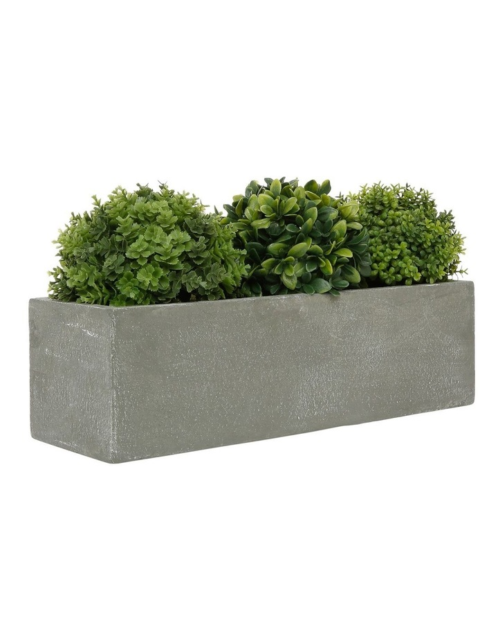Triple Topiary Grey Planter Box image 2