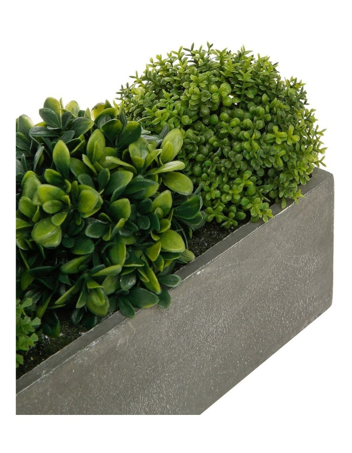 Triple Topiary Grey Planter Box image 3