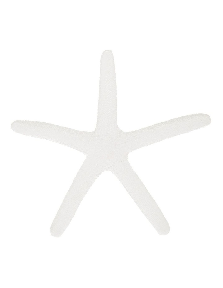 Decorative Sea Star White 20cm image 1