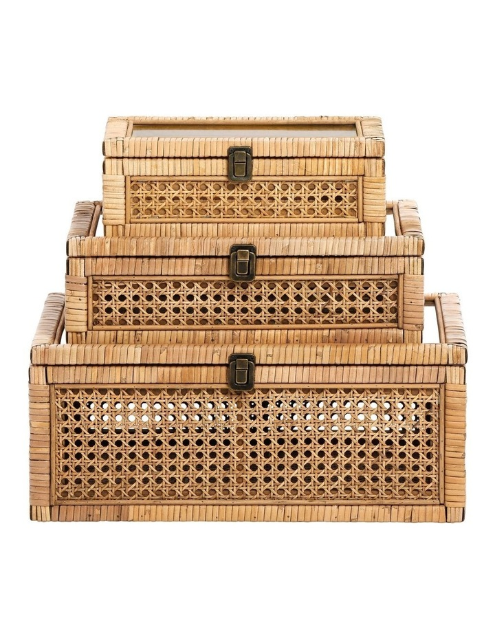 Rattan Box with Glass Lid 16x29cm image 2