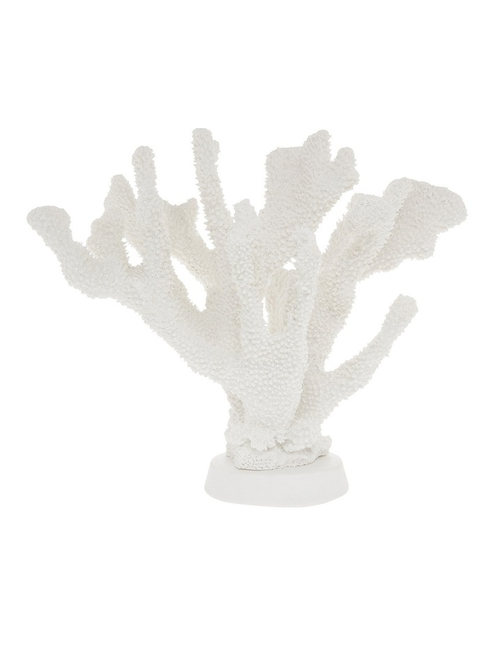 Resin Branching Coral on Stand 22.9x29.25cm image 1