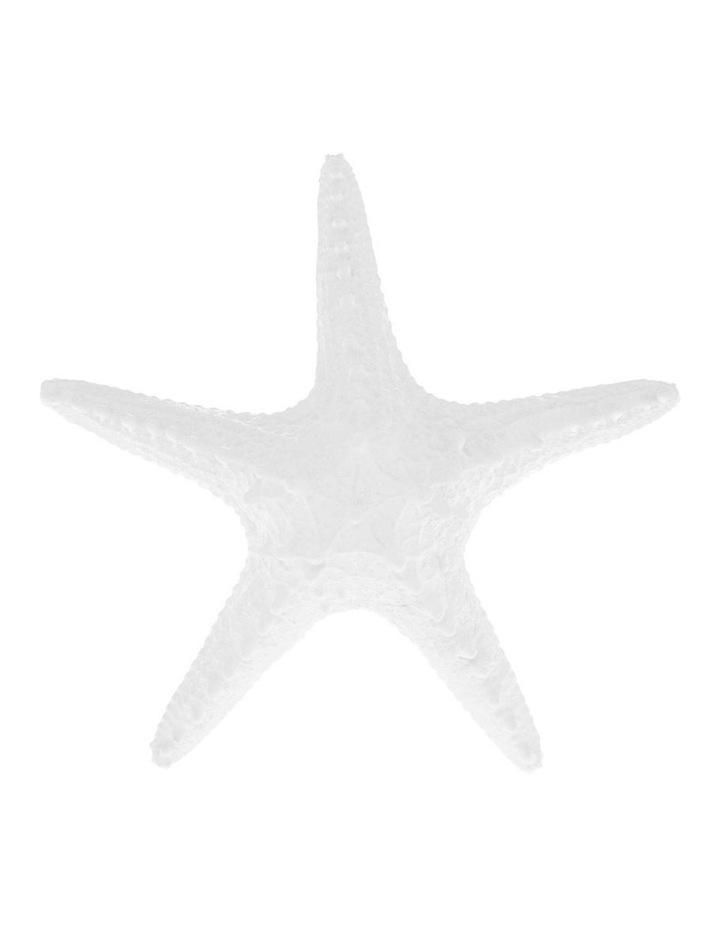 Kingsley Starfish image 1