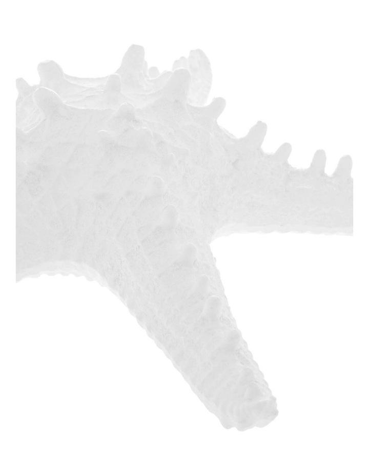 Kingsley Starfish image 2
