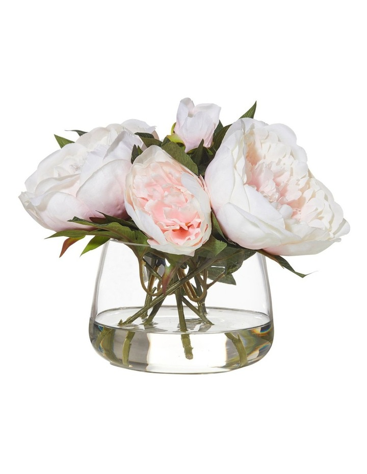 Rogue Peony in Rounded Classic Bowl 22cm Pink image 1