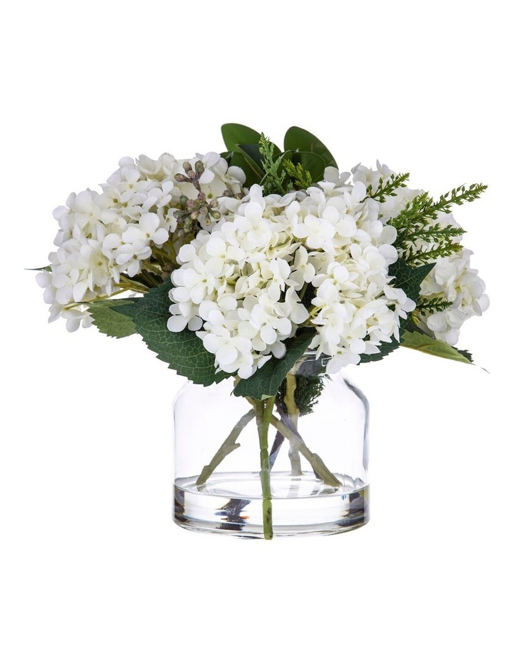 Hydrangea Bush Mix in Glass Jar 31cm White image 1