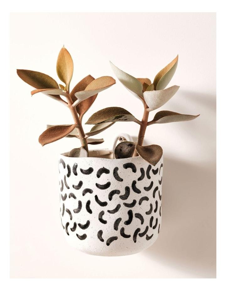 Linen House Paterna 15cm Planter Pot in Black Curve image 2