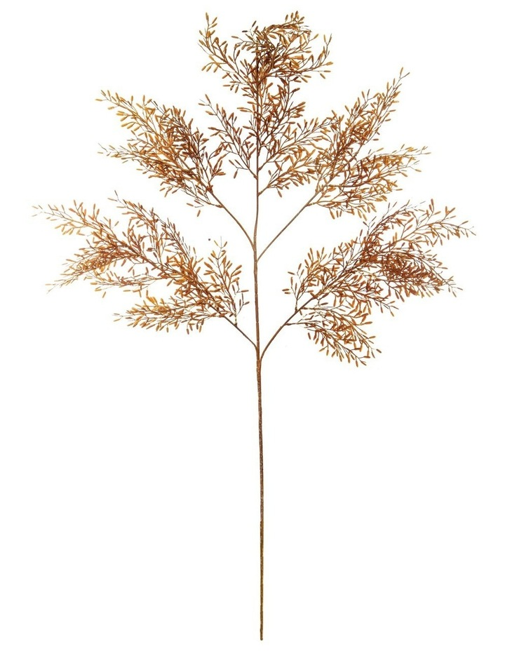 Acacia Foliage Spray Orange 110cm image 1