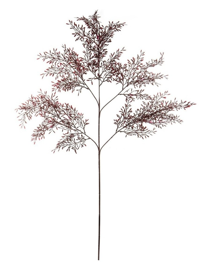 Acacia Foliage Spray Burgandy 110cm image 1
