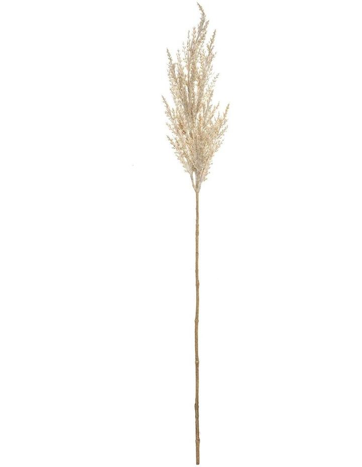 Pampas Grass Spray Cream 83cm image 1