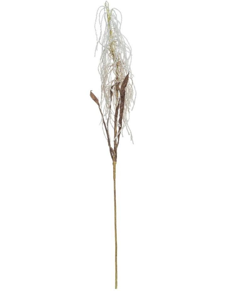 Rogue Field Grass Stem image 1