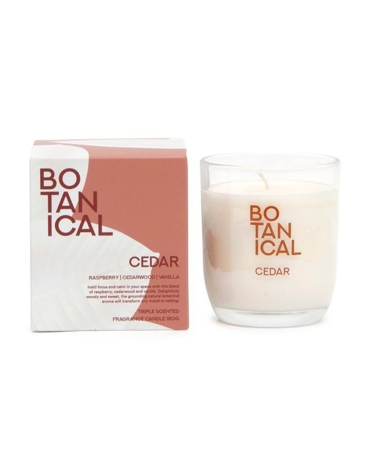 BOTANICAL Candle - Cedar - 180g image 1