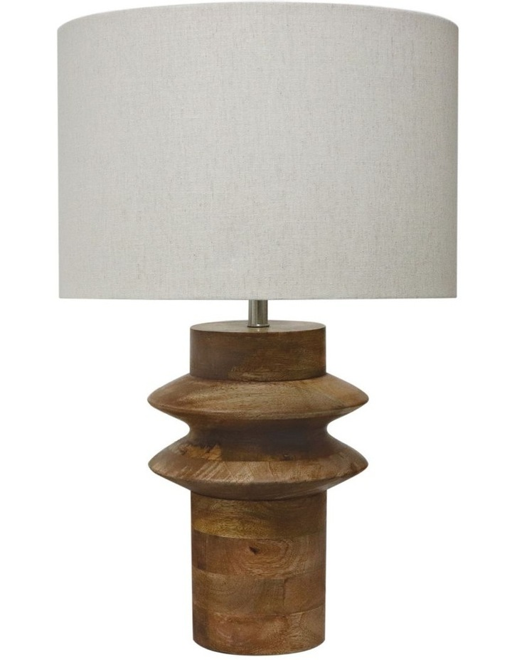 Andes Lamp image 1