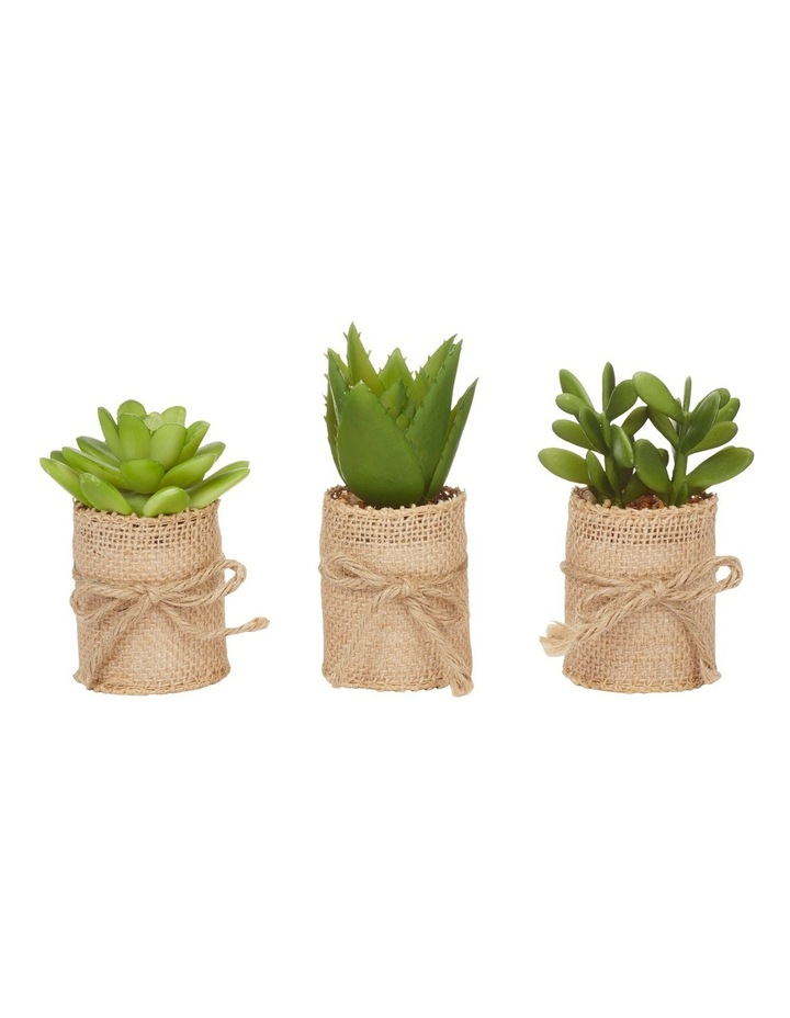 Hessian Pot Assorted Designs (Individual) image 1