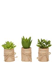 Emporium - Hessian Pot Assorted Designs (Individual)